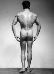 Bodybilder ca. 1950