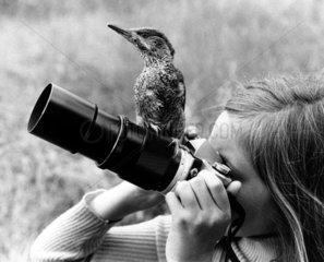 Vogel sitzt auf Objektiv
