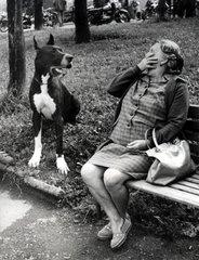 Frau erschrickt vor grosser Dogge