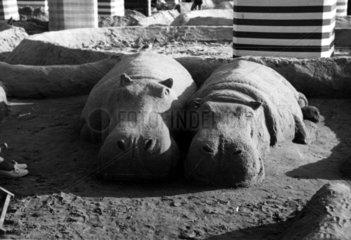 2 schlafende Nilpferde aus Sand