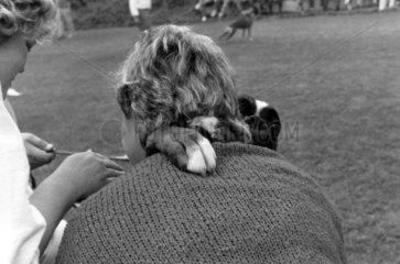Hund umarmt Mann