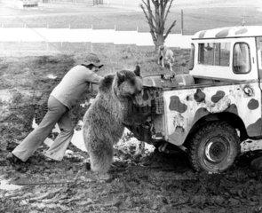 Man und Baer schieben Jeep an