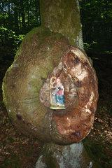 Wald Devotionalie
