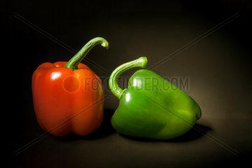 Zwei Paprikas vor schwarzem Hintergrund