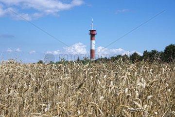 Leuchtturm Marienleuchte  Insel Fehmarn  Ostsee  Kreis Ostholstein  Schleswig-Holstein  Deutschland  Europa