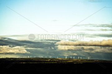 Windraeder in der Enfernung werden vom Sonnenlicht getroffen  die Wolken erzeugen eine dramatische Stimmung.
