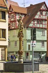 Georgsbrunnen mit dem Heiligen Georg  der einem Lindwurm seine Lanze in den Rachen bohrt  oestlicher Muensterplatz Ulm