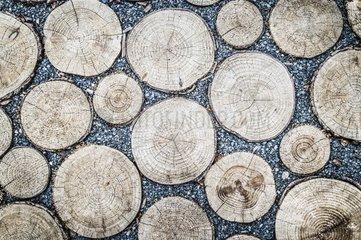 Pflaster aus Split und Baumstaemmen