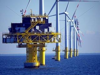 offshore windpark baltic 1