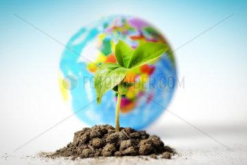 Junger Spross vor Erdkugel  Nachhaltigkeit