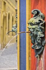 Wasserspeier am Stadtbrunnen suedoestlich des Rathauses zu Ulm  auch Syrlinbrunnen oder Fischkasten genannt