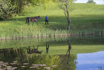 Spiegelung von Frau mit Araber Pferd am Weiher
