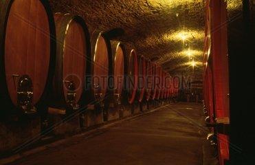 Weinfaesser im Weinkeller