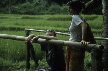 Reisfelder  Bali  Paar
