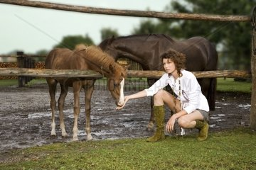 Frau an der Pferdekoppel