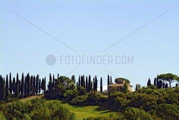 Landscape with House  Tuscany