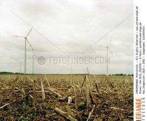 Kahles Feld mit Windraedern im Hintergrund