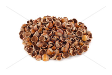 Nut shells on white background