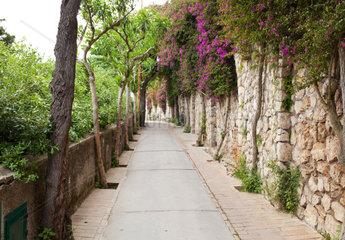 Via Tragara  the famous street of Capri island