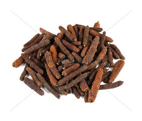 Long pepper or Piper longum on white background