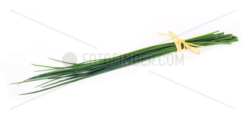 Fresh chive on white background