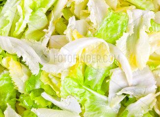 Raw fresh green salad lettuce