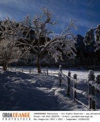 Winterlandschaft  Bayern  Deutschland