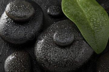 Hot Stones  Massagestein aus Balsalt