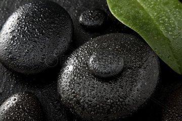 Hot Stones  Massagestein aus Basalt
