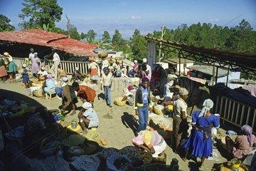 belebter Markt in Kenscoff  Haiti