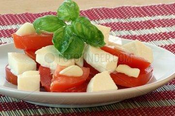 Mozzarella; Tomaten und Basilikum