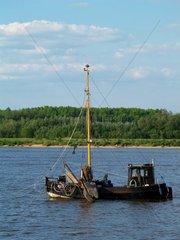 Fischkutter auf der Unterelbe Niedersachsen Deutschland Europa