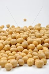 organic soya beans are a good alternative instead of meat
