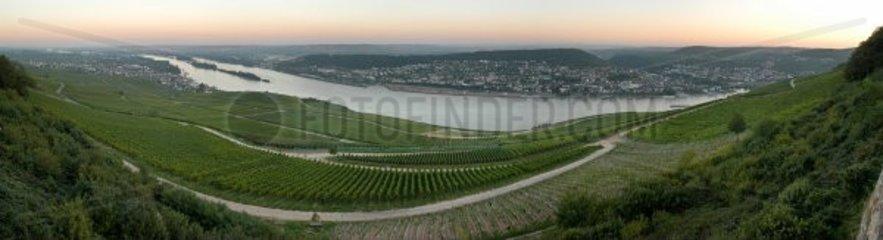 Weinberge Bingen Rhein