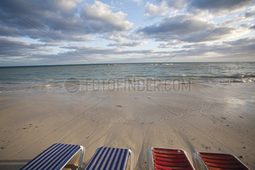 Empty deckchairs on beach
