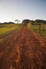 Dirt road through countryside