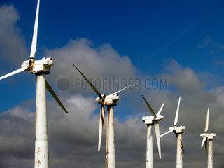 Windpark auf Big Island