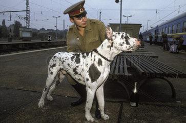 Russischer Soldat mit Hund