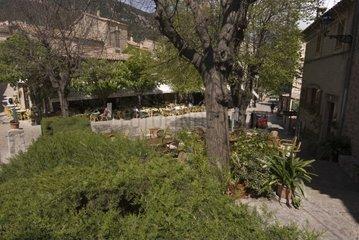 Valldemossa  Mallorca  Spanien  Europa