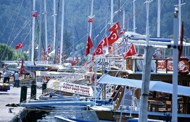 TUR  Tuerkei  Goecek  10.10.2005: Ausflugsschiffe im Hafen von Goecek