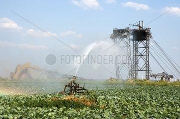 landwirtschaftliche Berieselungsanlage vor einem Schaufelradbagger