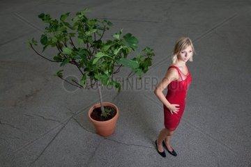 junge Frau in einem roten Kleid und ein Feigenbaum
