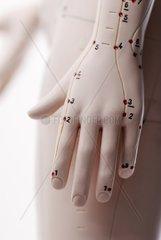 Hand mit Akupunkturpunkten