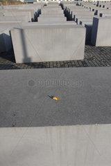 Herbst am Holocaust Mahnmal