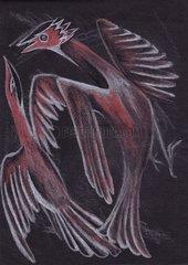 Birds Vogel