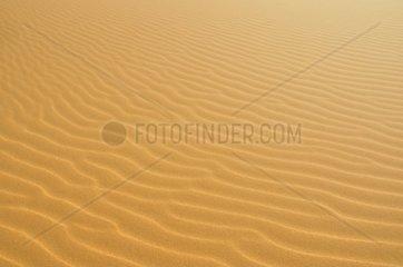 Sandduenen  Erg Chebbi  Marokko  Afrika