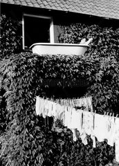 Sonnenbad am Waschtag