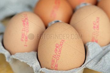 Eier von Freilandhuehnern