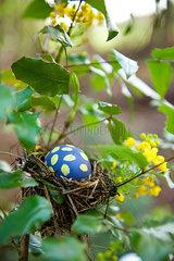 Osterei im Vogelnest