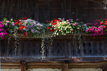 Old Bavarian farmhouse balcony with flowers